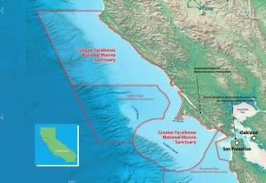 Greater Farallones National Marine Sanctuary